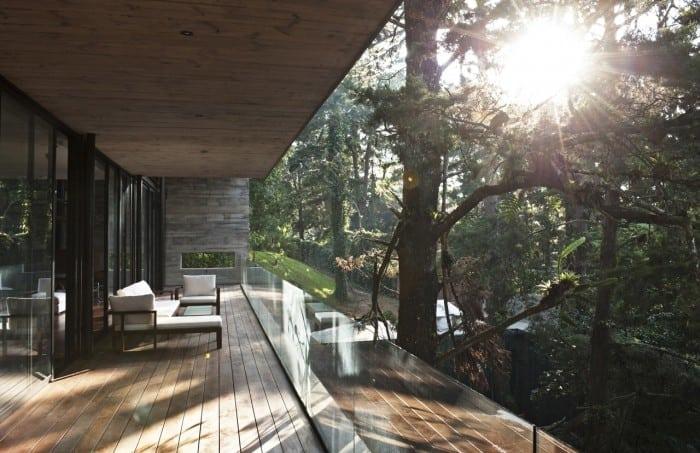 Corallo House – Casa din copac… sau copacul din casă