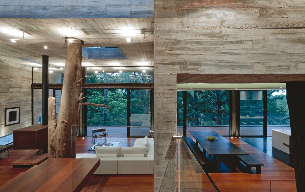 1332255760 9 - Corallo House - Casa din copac… sau copacul din casă