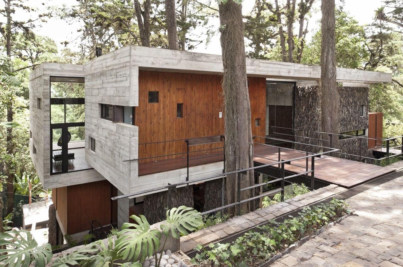 c4720869 3f3f 44de b40a 226fd84e602a - Corallo House - Casa din copac… sau copacul din casă
