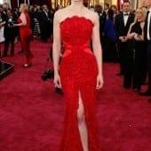 5 170x170 - Cele mai spectaculoase ținute de la Oscar