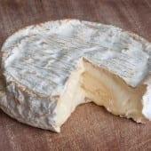 Coulommiers lait cru 170x170 - Brie și Camembert  sau recunoștința ca liant în gastronomie