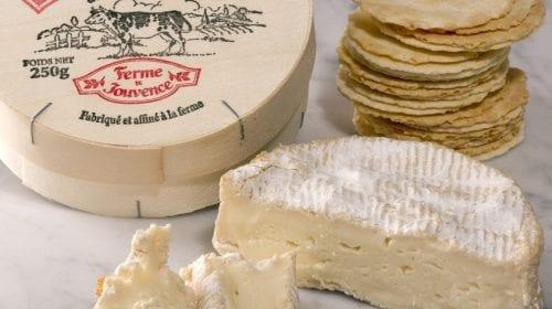 Brie și Camembert  sau recunoștința ca liant în gastronomie