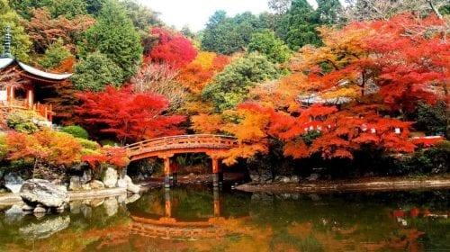 Suiran – o nouă destinație de lux inaugurată în Japonia