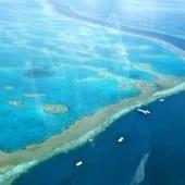 """mara bariera de corali1 170x170 - Descoperă romantismul """"Down Under"""" cu Trip Tailor – Consilierul tău privat pentru călătorii"""