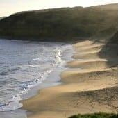 """plaja1 170x170 - Descoperă romantismul """"Down Under"""" cu Trip Tailor – Consilierul tău privat pentru călătorii"""