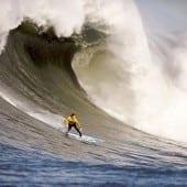 """surfer 170x170 - Descoperă romantismul """"Down Under"""" cu Trip Tailor – Consilierul tău privat pentru călătorii"""