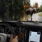 170163 Interior Large Animal Detection 1 170x170 - Volvo S90 - Pentru cei care iubesc condusul și care iubesc să se lase conduși
