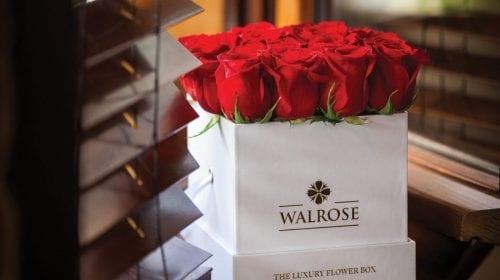 Walrose – More than flowers… memories