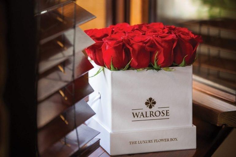 IMG 6722 770x513 - Walrose - More than flowers… memories