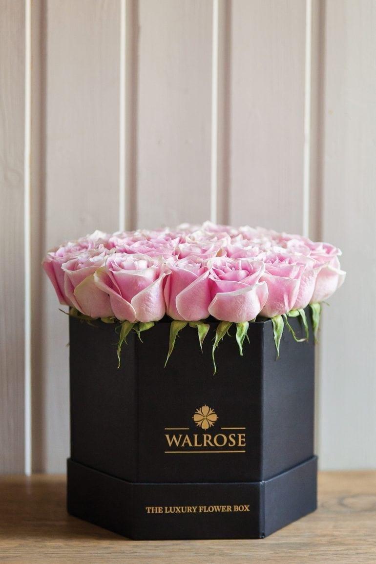 IMG 6861 770x1155 - Walrose - More than flowers… memories