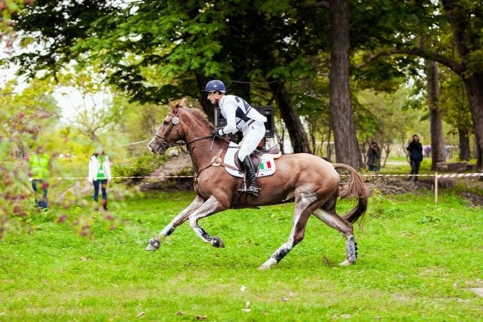 Karpatia Horse Show ajunge la ediția a III-a