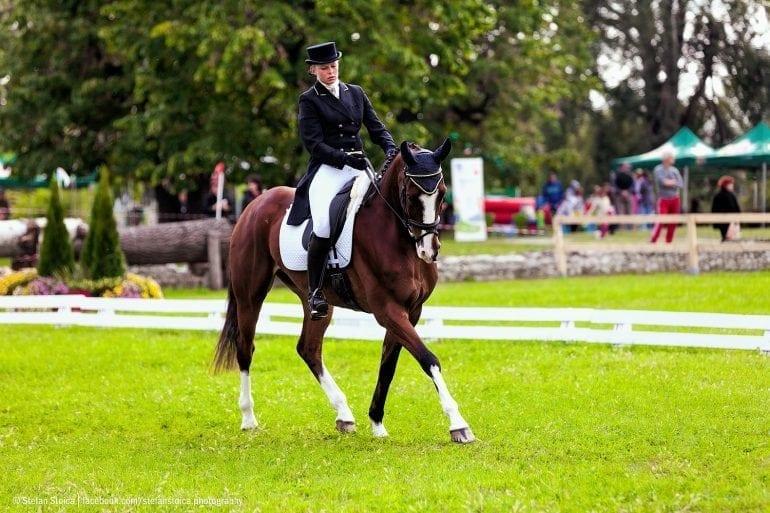 MG 0011 770x513 - Karpatia Horse  Show 2016