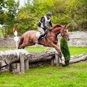 MG 0761 170x170 - Karpatia Horse  Show 2016