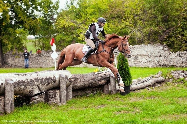 MG 0761 770x513 - Karpatia Horse  Show 2016