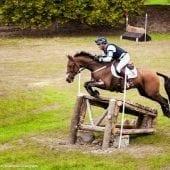 MG 0971 170x170 - Karpatia Horse  Show 2016