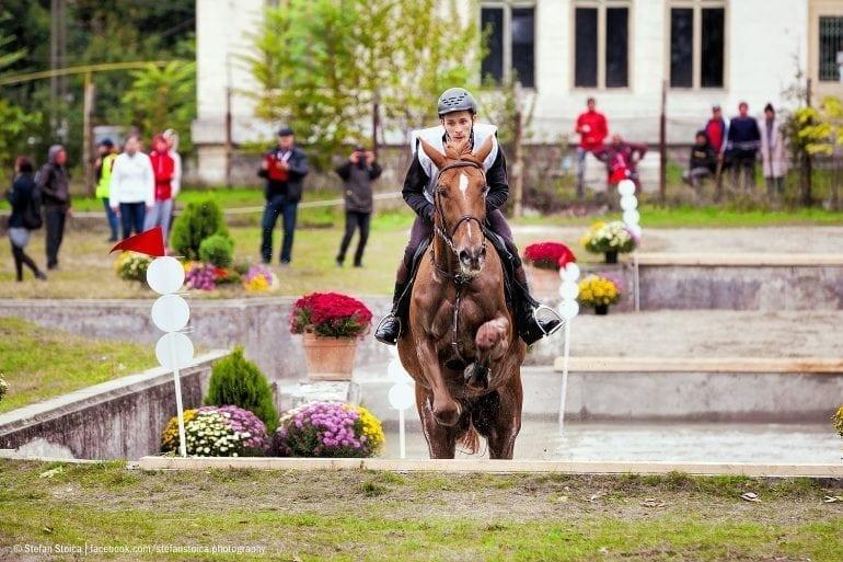 MG 2166 770x513 - Karpatia Horse  Show 2016