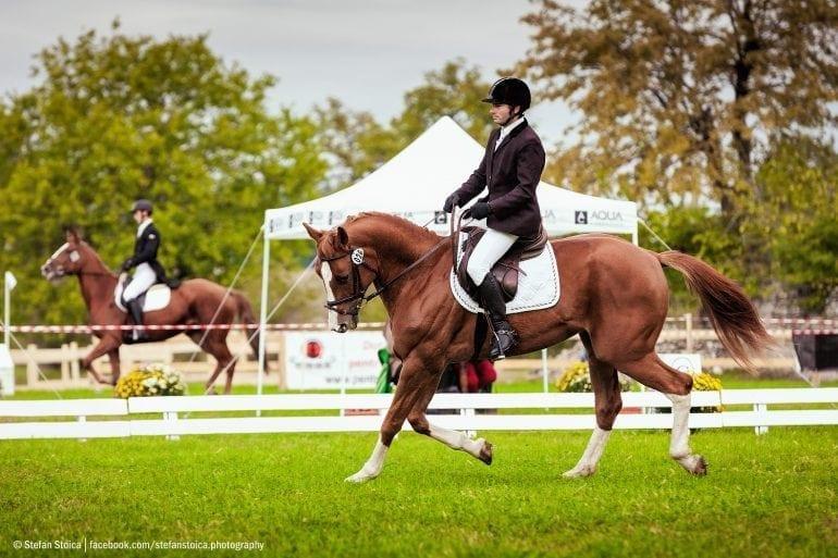 MG 9405 770x513 - Karpatia Horse  Show 2016