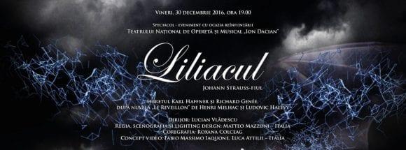 """Spectacolul de operetă """"Liliacul"""" la Palatul Parlamentului"""