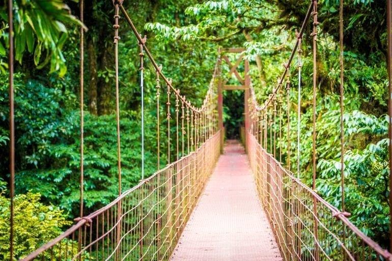 MONTEVERDE 770x513 - Travel in Style!  Top 5 destinații pentru iubitorii de natură