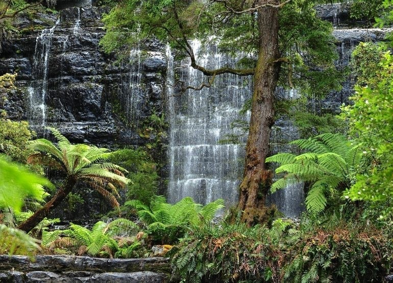 TASMANIA 770x554 - Travel in Style!  Top 5 destinații pentru iubitorii de natură