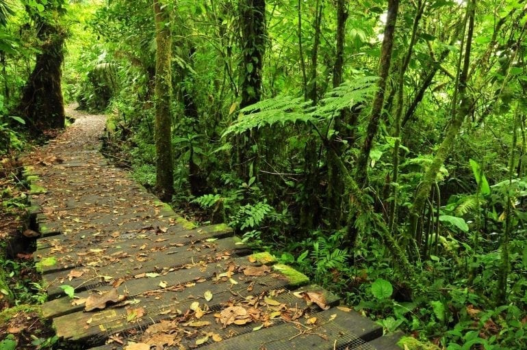 costa rica 14 site 770x512 - Travel in Style!  Top 5 destinații pentru iubitorii de natură