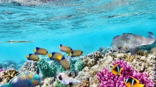 Travel in Style!  Top 5 destinații pentru iubitorii de natură