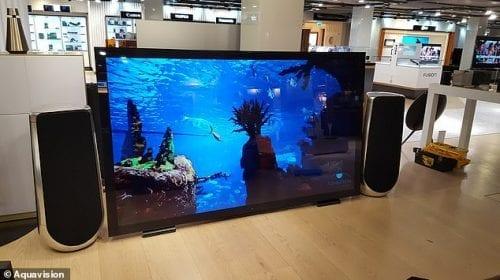 Televizor marca Aquavision, la 130.000 de dolari