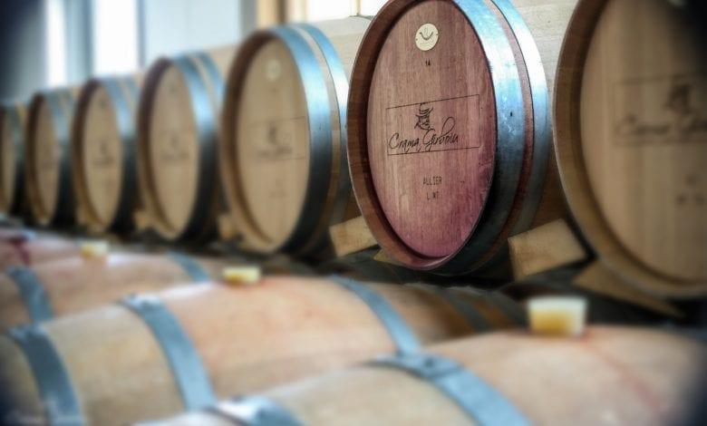 CONSTANTIN – un vin conceput la maturitate deplină!